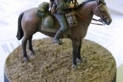 phoca_thumb_l_horse1